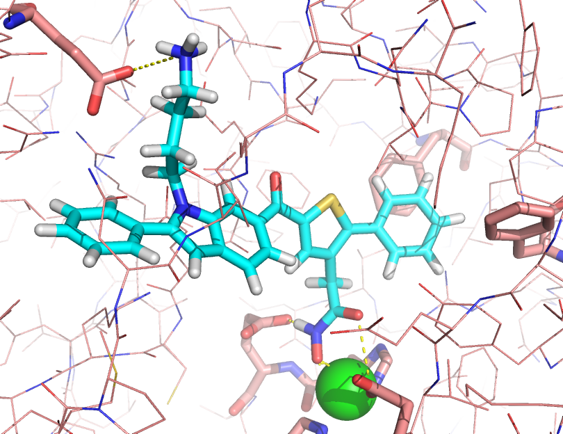 J.G. Park, P.C. Sill, E.F. Makiyi, A.T. Garcia-Sosa, C.B. Millard, J.J. Schmidt, Y.P. Pang, Serotype-selective, Small-molecule Inhibitors of the Zinc Endopeptidase of Botulinum Neurotoxin Serotype A, Bioorganic & Medicinal Chemistry, Bioorg. Med. Chem., 2006, Vol. 14, 395-408 Tetrahedral zinc protein ligand inhibitor drug design molecular dynamics Botulinum neurotoxin serotype A (BoNTA) is one of the most toxic substances known.  Currently, there is no antidote to BoNTA.  Small molecules identified from high-throughput screening reportedly inhibit the endopeptidase &ndash; the zinc-bound, catalytic domain of BoNTA &ndash; at a drug concentration of 20 &micro;M.  However, optimization of these inhibitors is hampered by challenges including the computational evaluation of the ability of a zinc ligand to compete for coordination with nearby residues in the active site of BoNTA.  No improved inhibitor of the endopeptidase has been reported.  This article reports the development of a serotype-selective, small-molecule inhibitor of BoNTA with a K<sub><em>i</em></sub> of 12 &micro;M.  This inhibitor was designed to coordinate the zinc ion embedded in the active site of the enzyme for affinity and to interact with a species-specific residue in the active site for selectivity.  It is the most potent small-molecule inhibitor of BoNTA reported to date.  The results suggest that multiple molecular dynamics simulations using the cationic dummy atom approach are useful to structure-based design of zinc protease inhibitors.